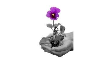 Giving in Memory