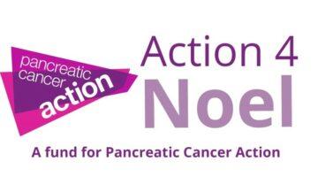pca action 4 noel