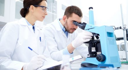 pancreatic cancer researchers