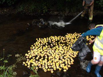 Duck race to raise money.