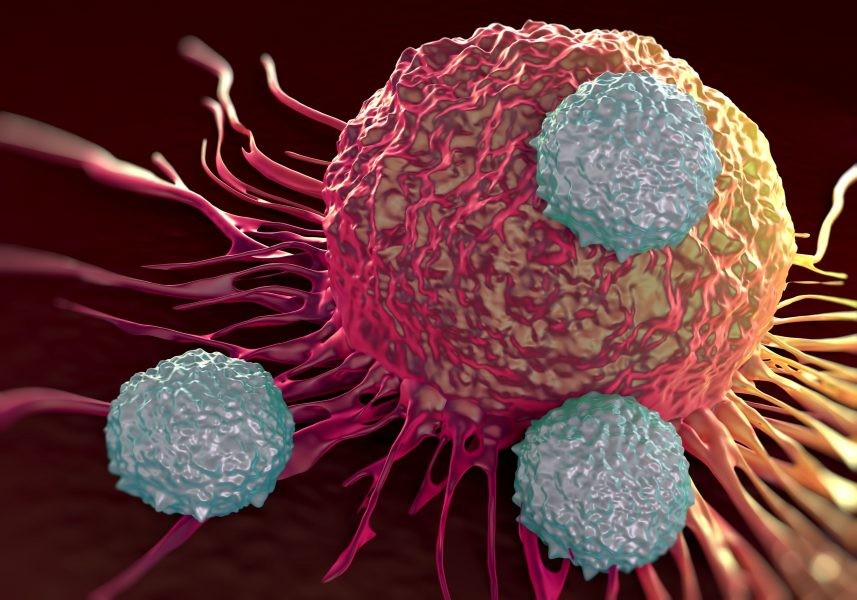 T-cells attacking cancer cell, pancreatic cancer immunotherapy