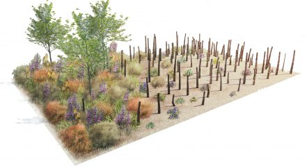 Striving for Survival garden at flower show.