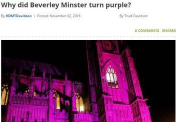 Hull Daily Mail Turn it Purple