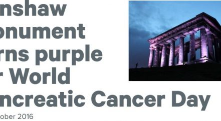 Turn Penshaw Purple
