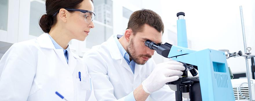 PhD Scolarship Grants - Pancreatic Cancer Action