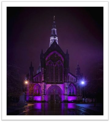 How to Light it Purple for Pancreatic Cancer Awareness Month
