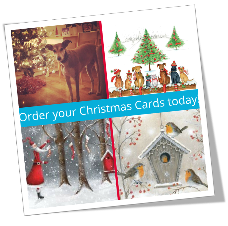 our xmas cards · Pancreatic Cancer Action