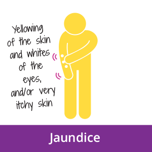 A icon of a person with jaundice, an early signs of pancreatic cancer