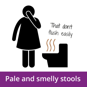 An icon of a person next to a toilet with pale and smelly stools that do not flush easily, a possible early signs of pancreatic cancer.