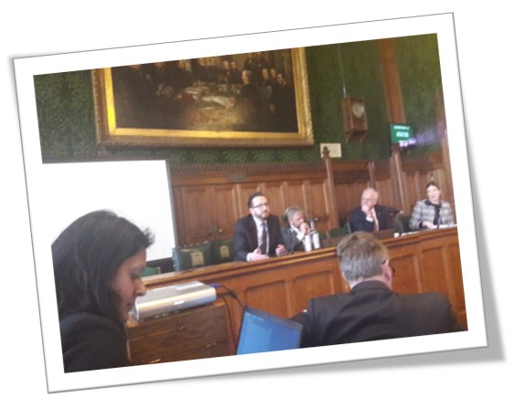 An image of a speaker at the APPG on the NICE guidelines for pancreatic cancer treatments for adults