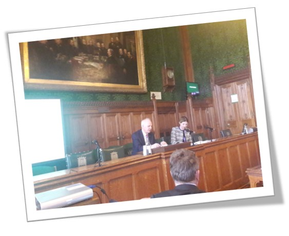 An image of a speaker at the APPG for the NICE guidelines of the management of pancreatic cancer adult patients