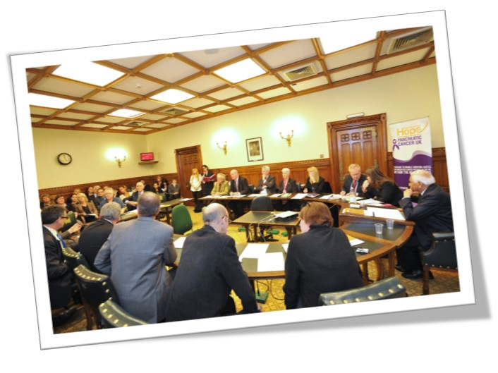 An image of the APPG for pancreatic cancer sat at a conference table
