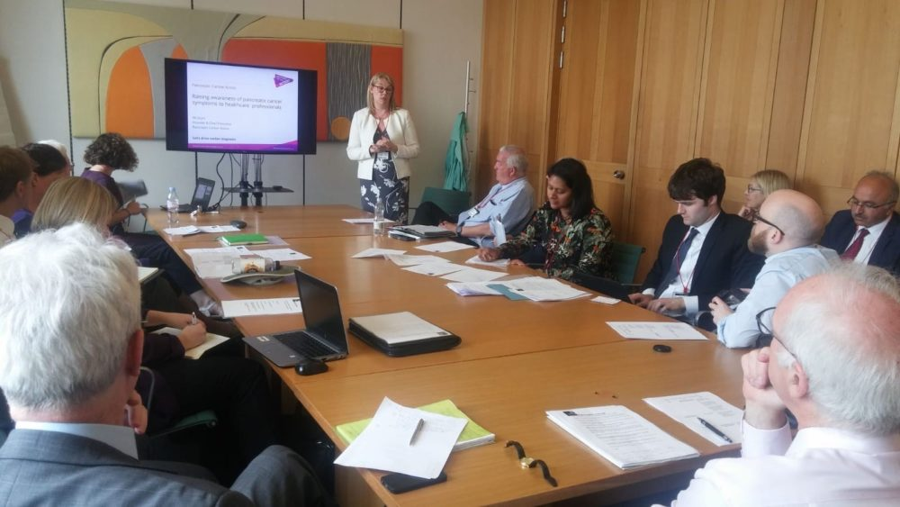 The APPG on PC was held in Westminster, 2018. Here, Ali Stunt, CEO and Founder of PCA, presents to the group.