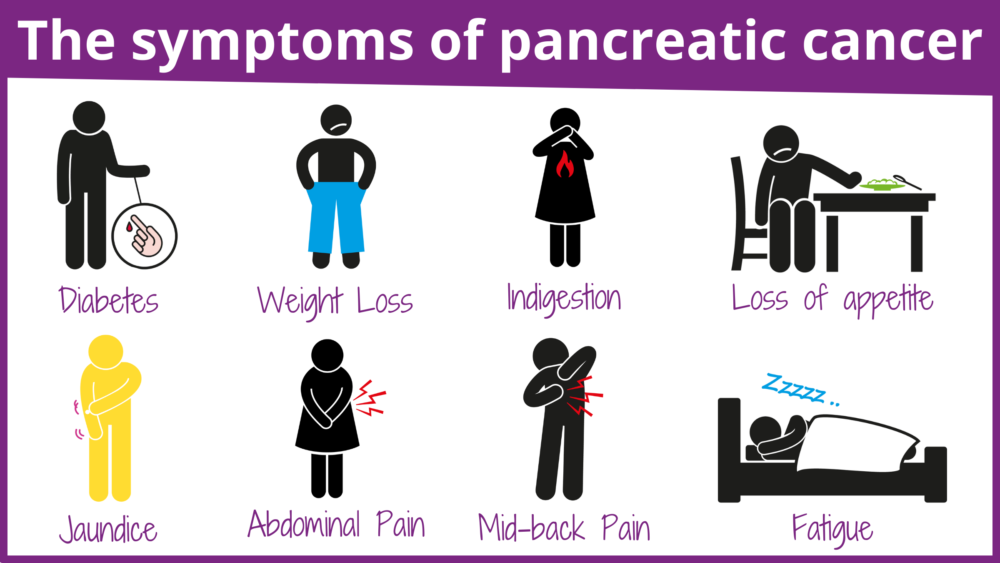 The symptoms of pancreatic cancer (1)